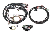 UNIVERSAL FORD V-8 HARNESS KIT Universal Ford V8, Bosch Injector